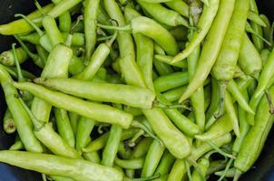 Pimenta verde foto