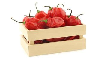 pimentas de adjuma vermelhas quentes picantes em uma caixa de madeira foto