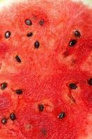 macro de fundo de melancia foto
