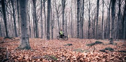 motociclista da montanha na ciclovia na floresta