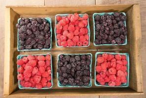 caixa de madeira com cestas de frutas foto
