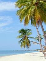 Marco da praia de Baan Tai Ilha de Koh Samui, Tailândia foto