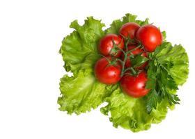 os tomates nas folhas foto