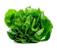 salada de alface isolada no branco foto