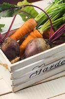 legumes frescos no balde foto