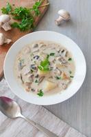 prato de sopa vegetariana de cogumelos foto