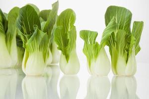 vegetal isolado foto