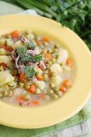 sopa de verão foto