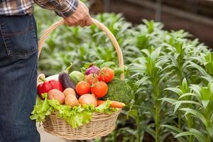 comer comida fresca e você será saudável foto