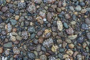 rochas da costa do canal da capa foto