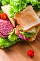 sanduíche com salame e queijo foto