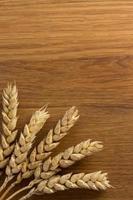 espigas de trigo na madeira