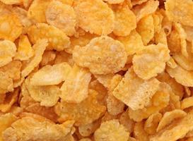 flocos de milho 4 foto