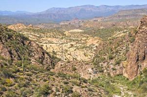 paisagem do deserto no arizona foto