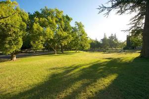 manhã no parque foto