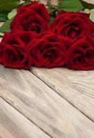 rosas vermelhas frescas foto