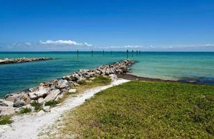 Baía de Tampa foto