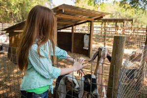 menina de fazenda com uma cabra foto