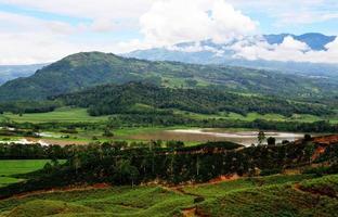 plantação, rio, montanhas