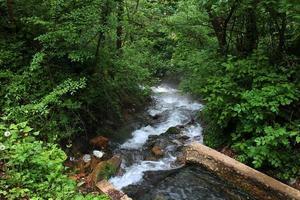 rio de montanha fluindo abaixo foto