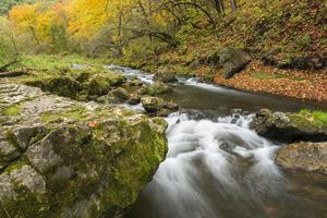 rio de águas bravas no outono