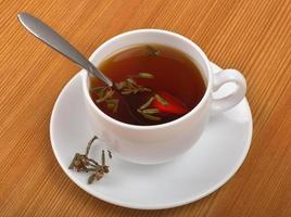 bebida curativa de chá com rododendro adamsii foto