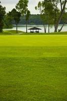 verde em um campo de golfe - cingapura foto