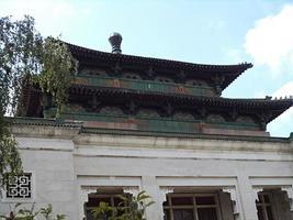 detalhe do telhado do edifício chinês