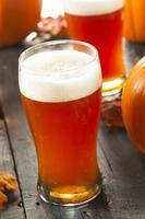 cerveja espumosa de abóbora e laranja