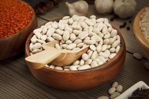 conceito de sementes de feijão foto