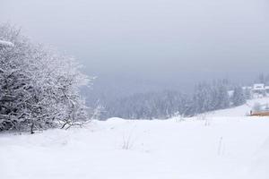 paisagem fantástica de inverno