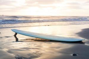 prancha de surfe foto