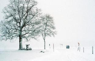 cenário de inverno foto
