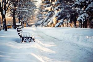 parque de inverno foto