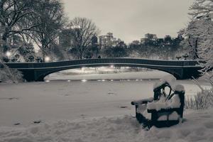 inverno central park foto