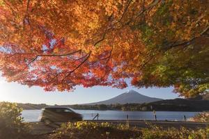 folhas de bordo mudam para a cor do outono em mt.fuji, japão