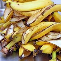casca de banana amarela depois de um lanche de crianças