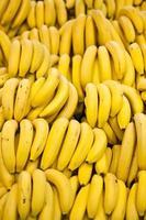 bananas amarelas foto