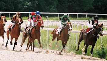 corrida de cavalo foto