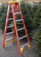 árvores de natal para venda foto