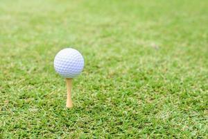 bola de golfe com tee na luz solar de manhã cedo. foto