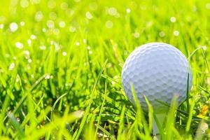 macro de uma bola de golfe na grama verde foto