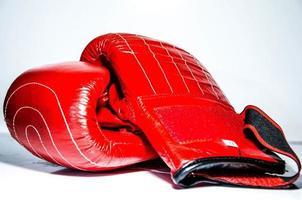 luvas de boxe foto