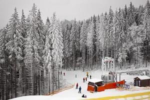 pista de esqui na floresta de inverno