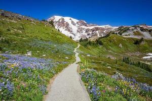trilha para o Monte Rainier