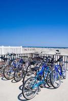 muitas bicicletas trancadas foto