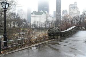 ponte gapstow central park, nova iorque foto
