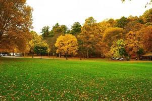 cena de outono foto