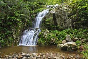 Cachoeira do córrego e piscina rochosa foto