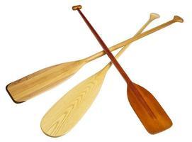 remos de canoa de madeira foto